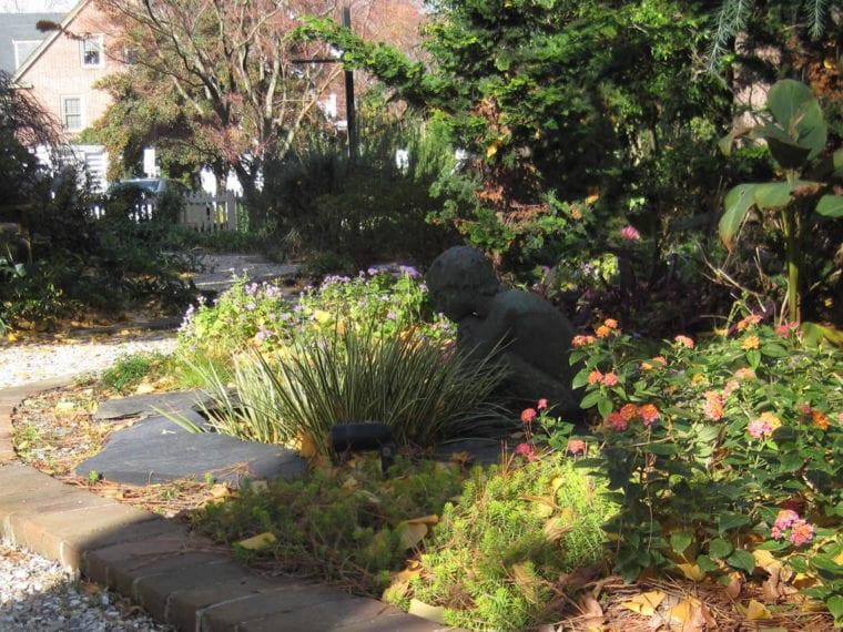 garden with flowering plants