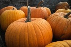 Williamsburg Halloween